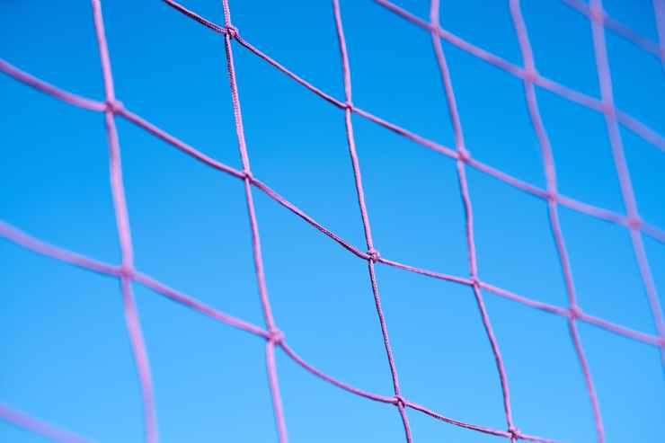 purple volleyball net