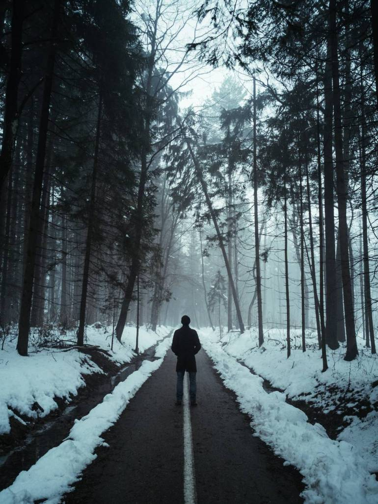 person in black jacket walking on snow covered pathway between trees